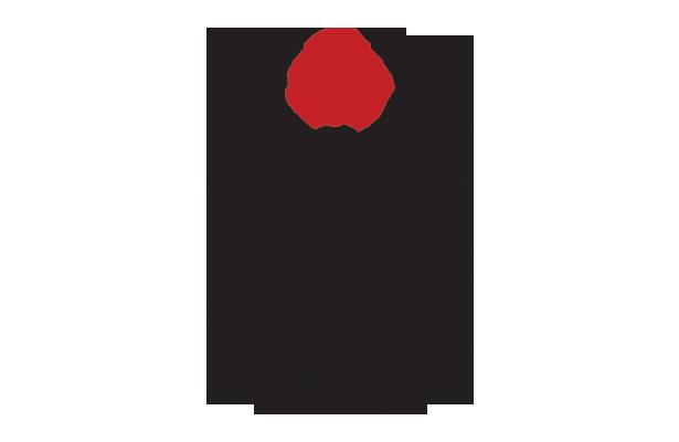 Image result for myerscough basketball logo